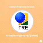 Tribunais Regionais Eleitorais: um nicho que movimenta candidatos.