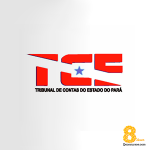 TCE-PA: mini coaching com a análise do edital e dicas importantes!