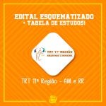 Concurso do TRT 11 – Tabelas de Estudos e Edital esquematizado dos cargos