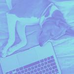 Imagem: 5 dicas para estudar sem pegar no sono